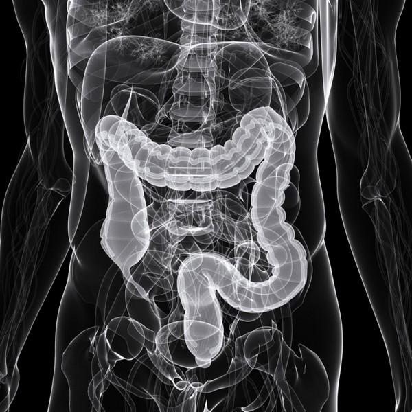 Как правильно подготовиться к рентгену кишечника с барием, и как он проводится?